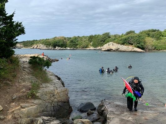 TropicalFish Rescue